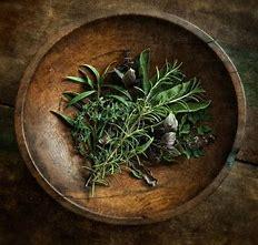 erbe magiche e curative