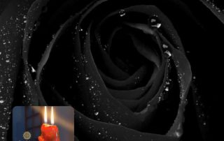 legamento o legatura d'amore della rosa nera