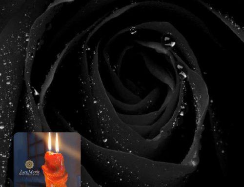 Legatura d'Amore della Rosa Nera.